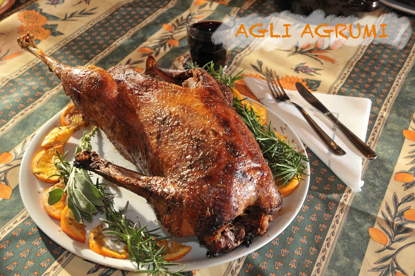 Picture of Roasted duck